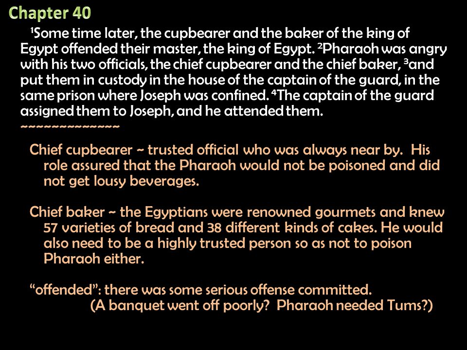 1 Some time later, the cupbearer and the baker of the king of Egypt offended their master, the king of Egypt.
