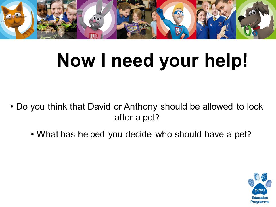 Now I need your help! Do you think that David or Anthony should be allowed to look after a pet ? What has helped you decide who should have a pet ?