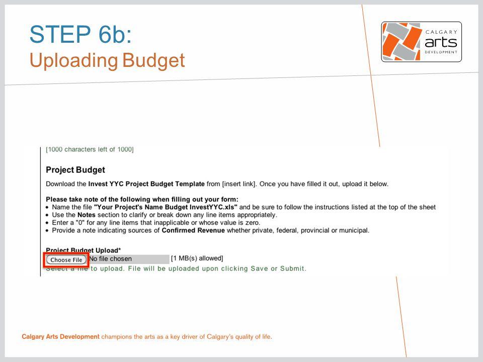 STEP 6b: Uploading Budget