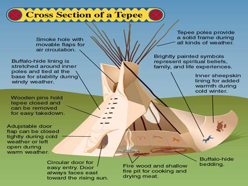 Their home They lived in tepees Their tepees were portable homes The tepees were very easy to take up and down they helped them follow the buffalo