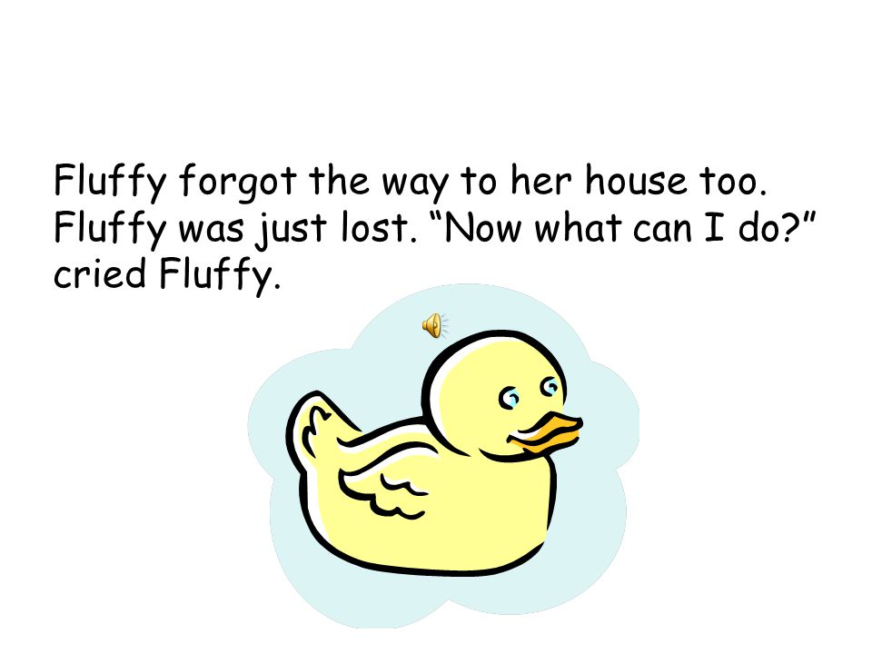 One day Fluffy was heading to Nancy and Amber's house.