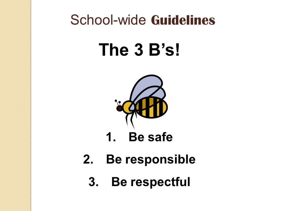 School-wide Guidelines The 3 B's! 1.Be safe 2.Be responsible 3.Be respectful