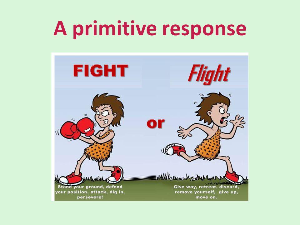 A primitive response