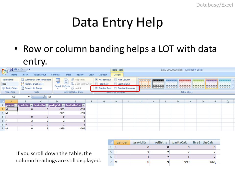 Data Entry Help Row or column banding helps a LOT with data entry. If you scroll down the table, the column headings are still displayed. Database/Exc