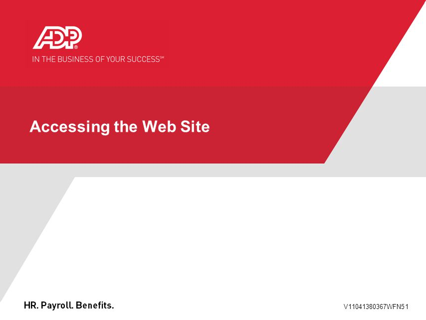 V11041380367WFN51 Accessing the Web Site
