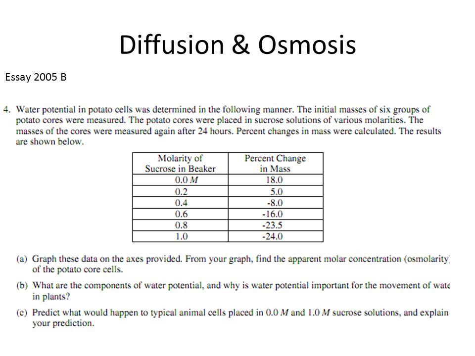 Diffusion & Osmosis Essay 2005 B