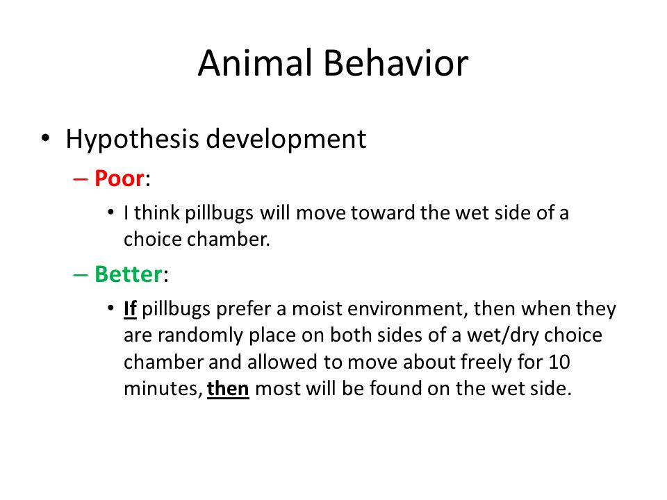Animal Behavior Hypothesis development – Poor: I think pillbugs will move toward the wet side of a choice chamber. – Better: If pillbugs prefer a mois