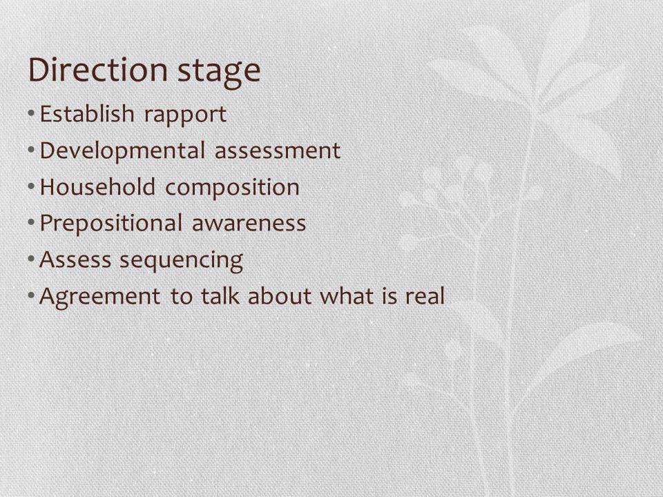 Direction stage Establish rapport Developmental assessment Household composition Prepositional awareness Assess sequencing Agreement to talk about what is real
