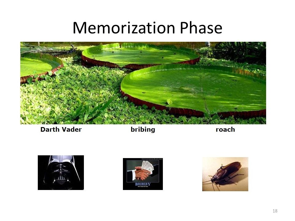 Memorization Phase 18