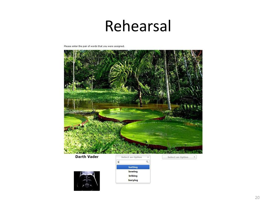 Rehearsal 20