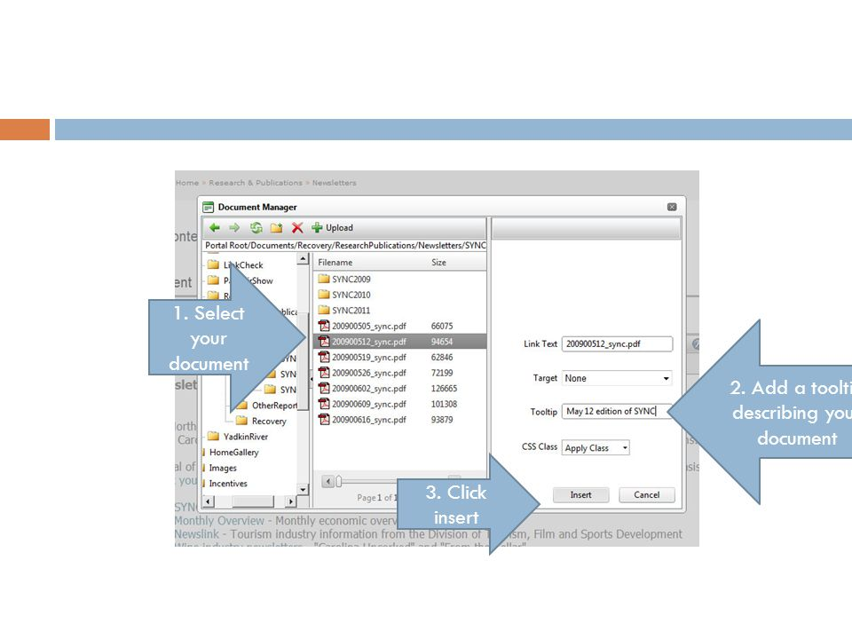 1. Select your document 2. Add a tooltip describing your document 3. Click insert