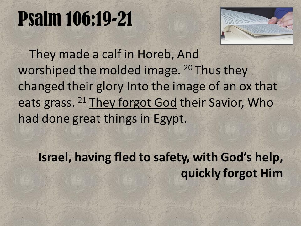 Psalm 106:19-21 They made a calf in Horeb, And worshiped the molded image. 20 Thus they changed their glory Into the image of an ox that eats grass. 2