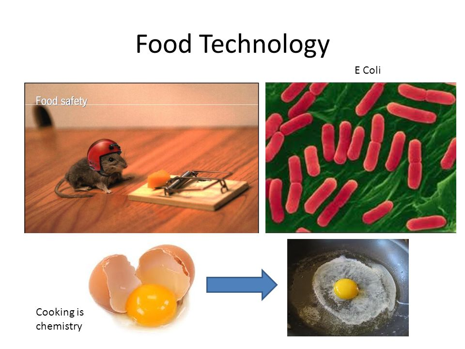 Food Technology Cooking is chemistry E Coli