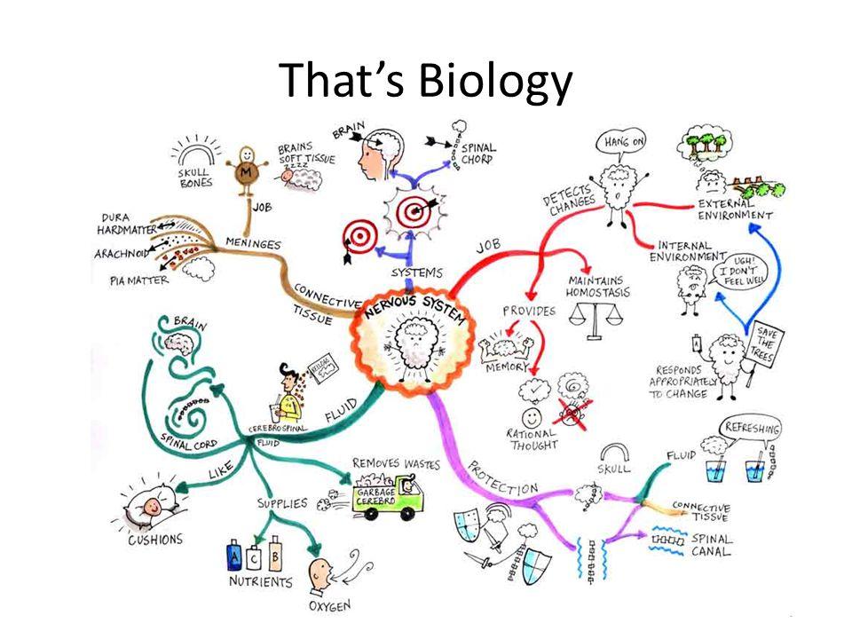 That's Biology