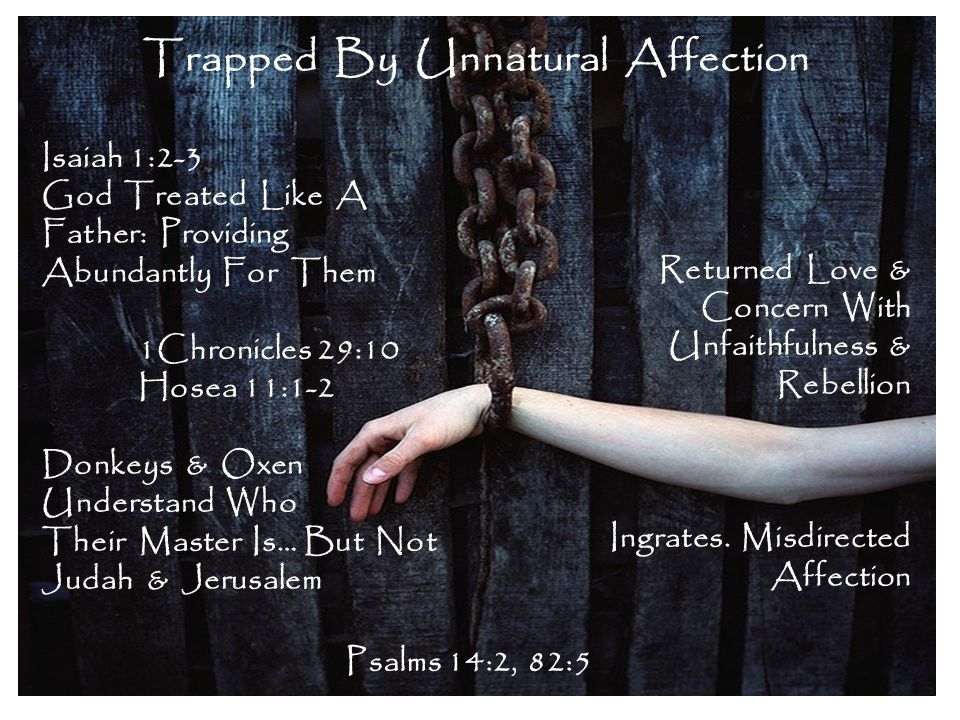 Trapped By Unnatural Affection Isaiah 1:2-3 God Treated Like A Father: Providing Abundantly For Them 1Chronicles 29:10 Hosea 11:1-2 Donkeys & Oxen Und