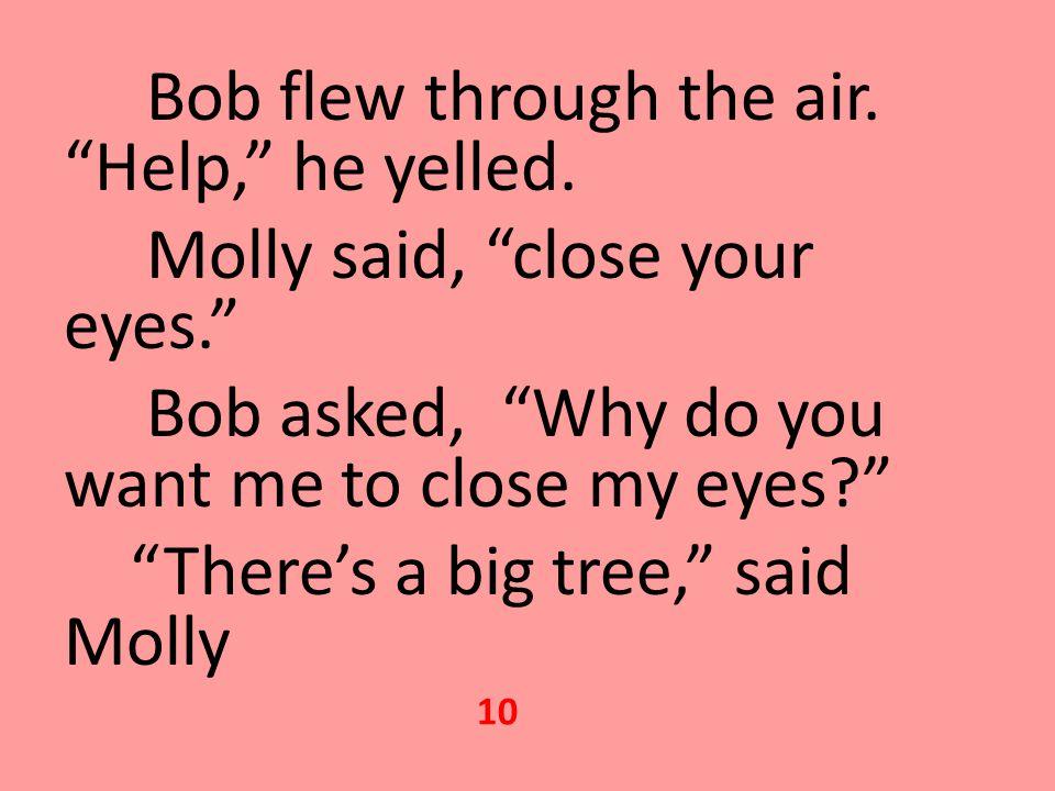 Bob flew through the air. Help, he yelled.