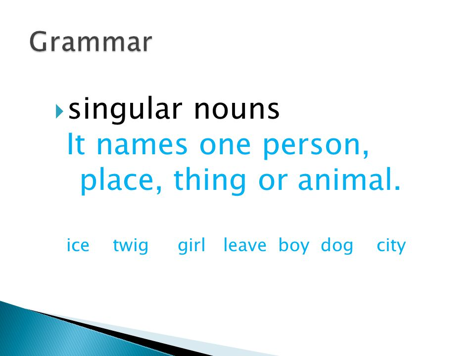  singular nouns It names one person, place, thing or animal. ice twig girl leave boy dog city