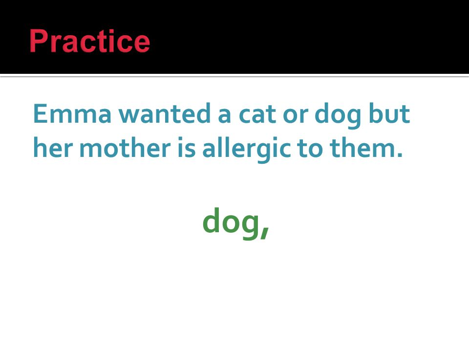 Emma wanted a cat or dog but her mother is allergic to them. dog,