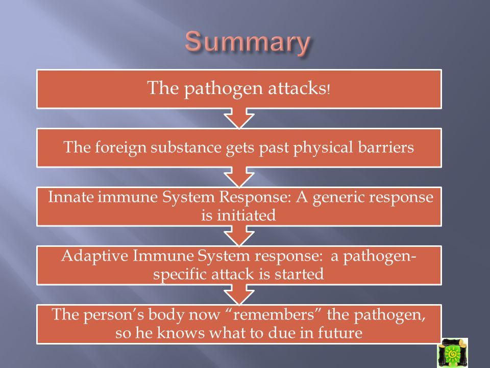 "The person's body now ""remembers"" the pathogen, so he knows what to due in future Adaptive Immune System response: a pathogen- specific attack is star"