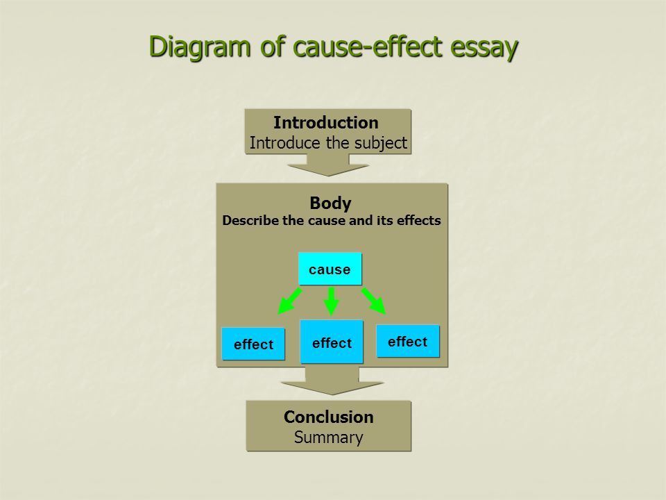 cause effect essay introduction the cause effect essay explains  14 transition