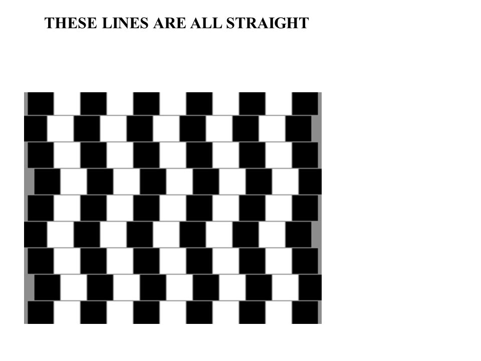THESE LINES ARE ALL STRAIGHT