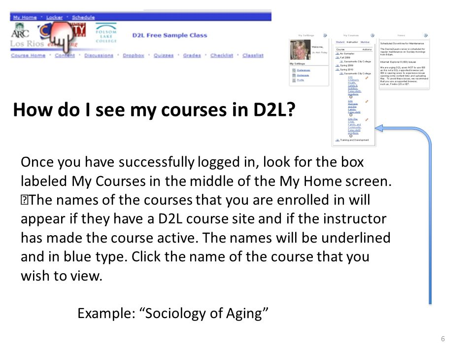 How do I see my courses in D2L.