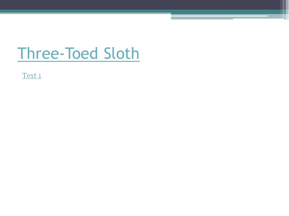 Three-Toed Sloth Text 1