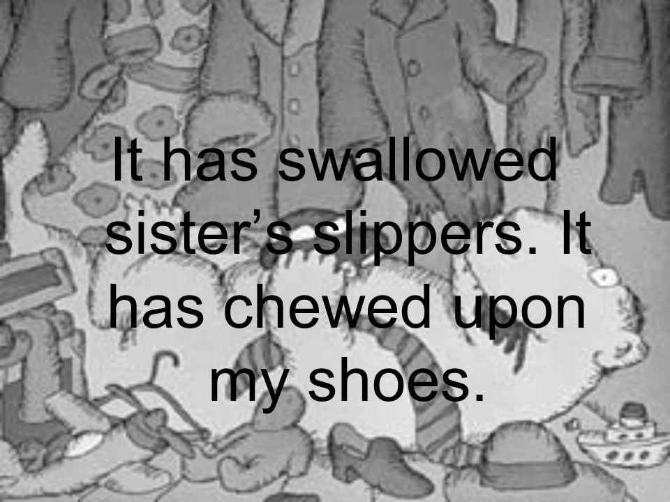 It has swallowed sister's slippers. It has chewed upon my shoes.