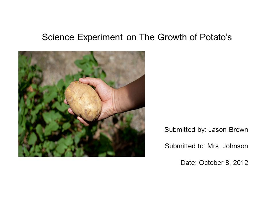 Science Experiment on The Growth of Potato's Submitted by: Jason Brown Submitted to: Mrs.