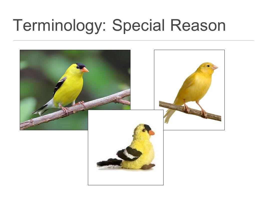 Terminology: Special Reason