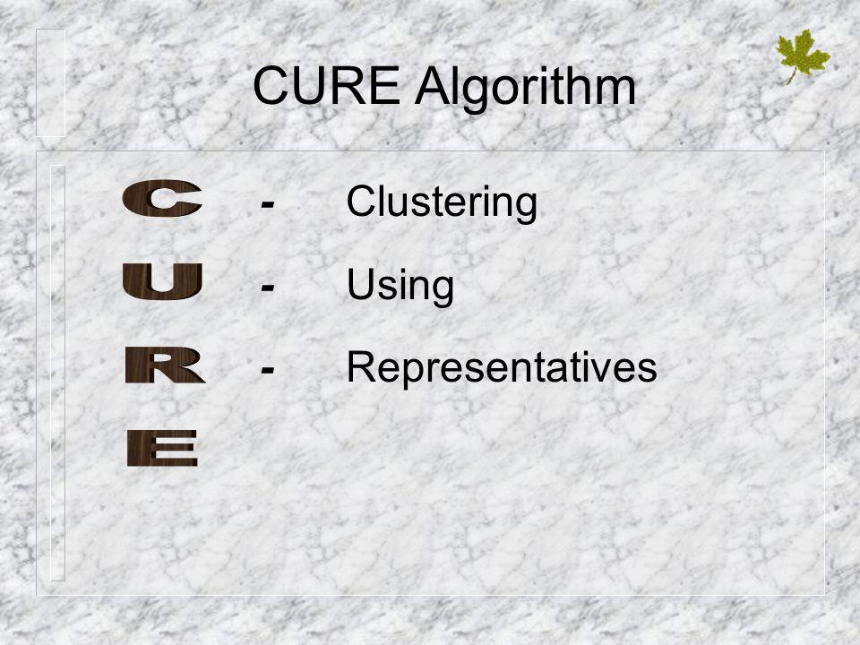 CURE Algorithm -Clustering -Using -Representatives