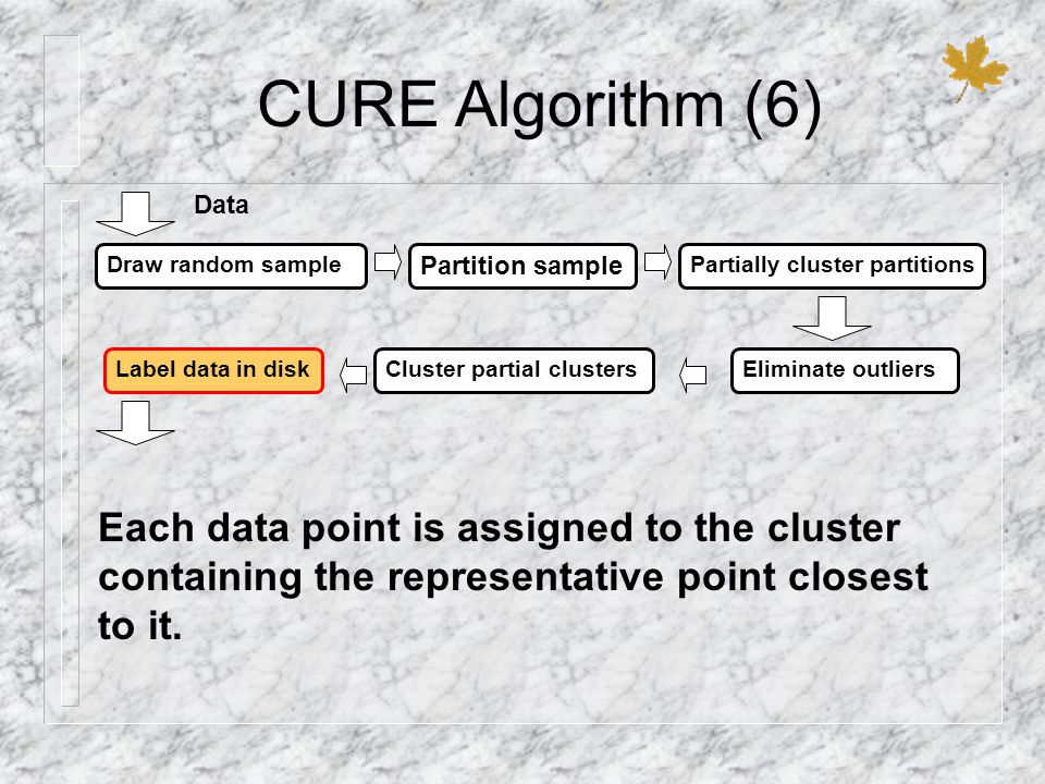 CURE Algorithm (6) Draw random sample Partition sample Partially cluster partitions Label data in diskCluster partial clustersEliminate outliers Data Each data point is assigned to the cluster containing the representative point closest to it.