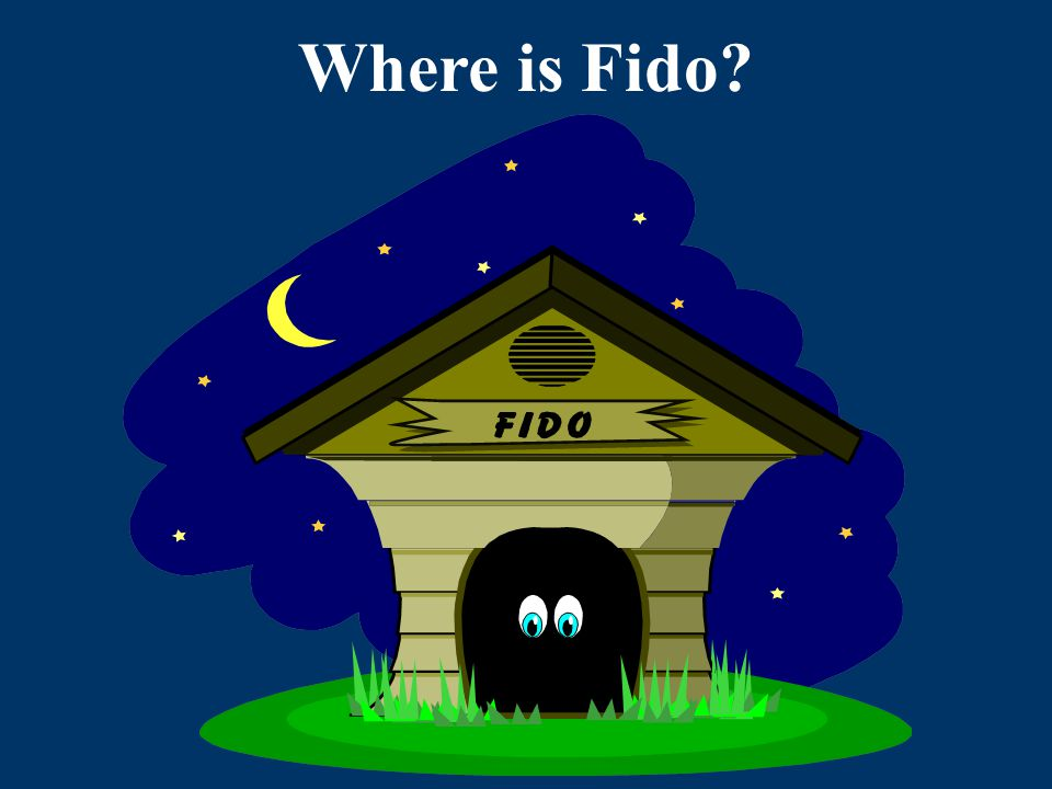 Where is Fido