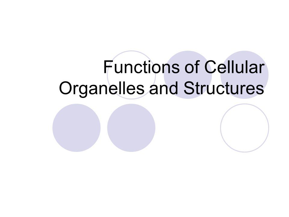 Functions of Cellular Organelles and Structures