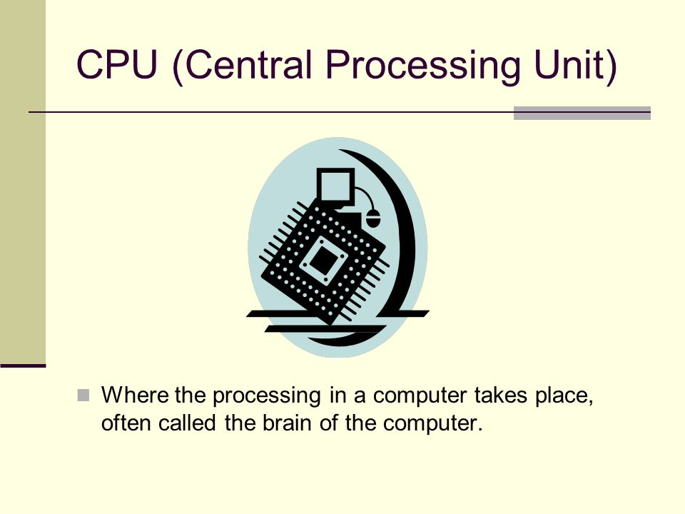 CPU (Central Processing Unit) Where the processing in a computer takes place, often called the brain of the computer.