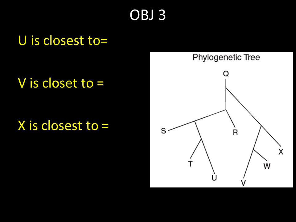 OBJ 3 U is closest to= V is closet to = X is closest to =