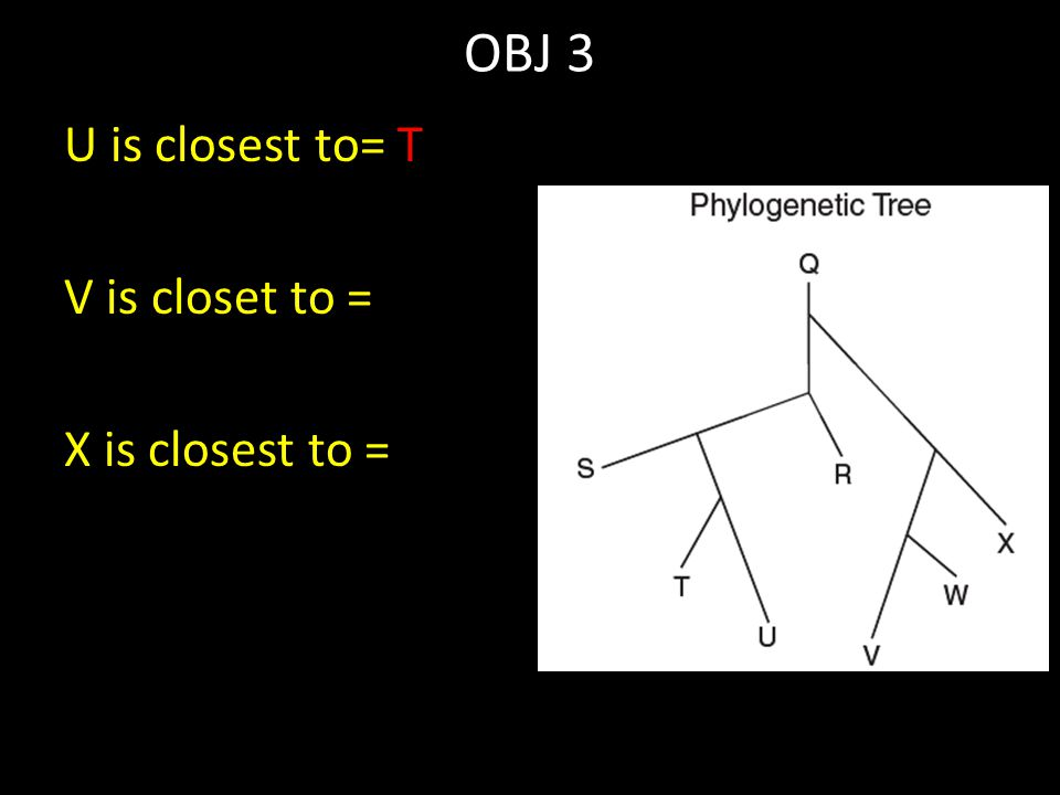 OBJ 3 U is closest to= T V is closet to = X is closest to =