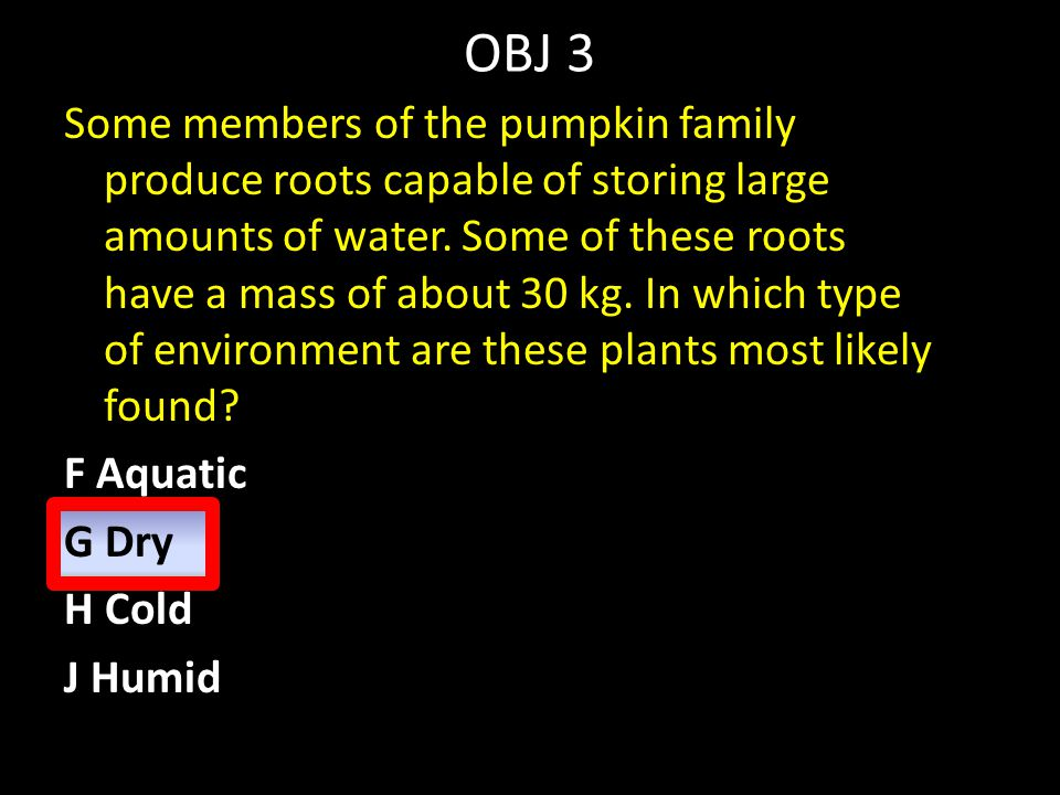 OBJ 3 Some members of the pumpkin family produce roots capable of storing large amounts of water. Some of these roots have a mass of about 30 kg. In w