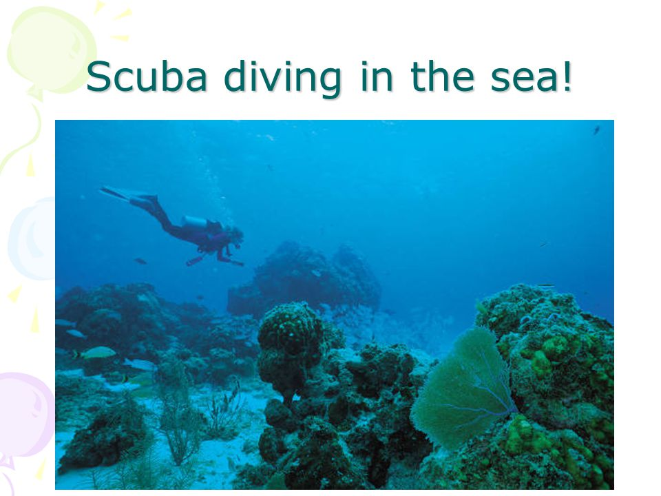Scuba diving in the sea!