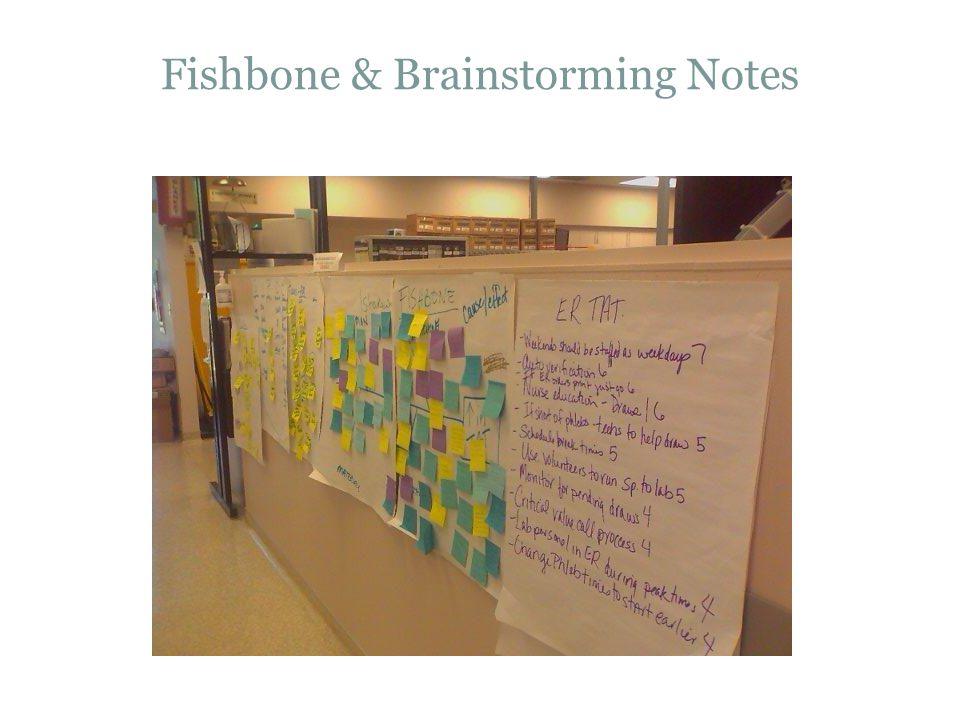 Fishbone & Brainstorming Notes