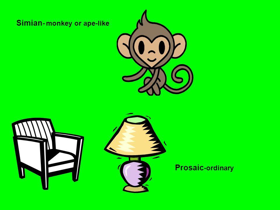 Simian - monkey or ape-like Prosaic -ordinary