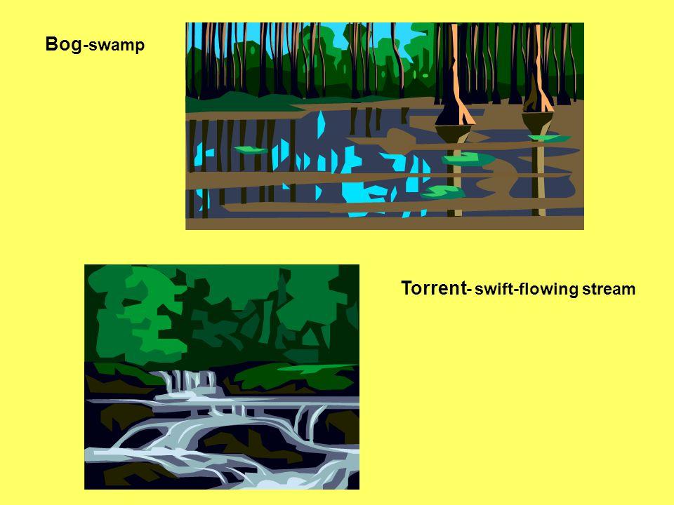 Bog -swamp Torrent - swift-flowing stream