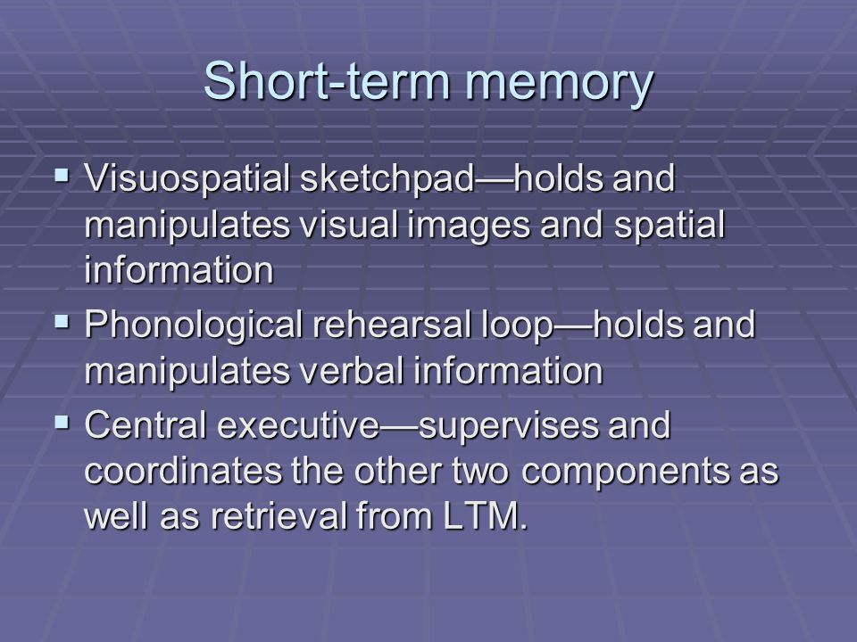 Short-term memory  Visuospatial sketchpad—holds and manipulates visual images and spatial information  Phonological rehearsal loop—holds and manipul