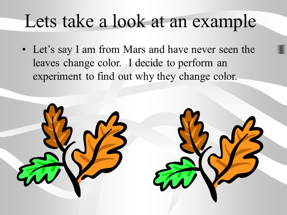 Lets take a look at an example Let's say I am from Mars and have never seen the leaves change color. I decide to perform an experiment to find out why