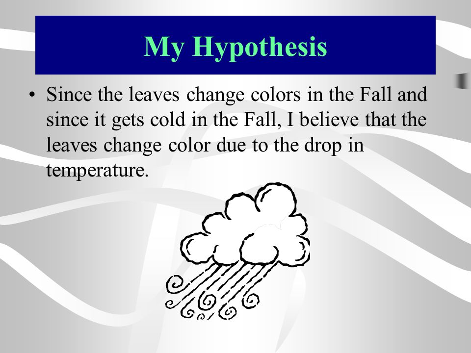 My Hypothesis Since the leaves change colors in the Fall and since it gets cold in the Fall, I believe that the leaves change color due to the drop in