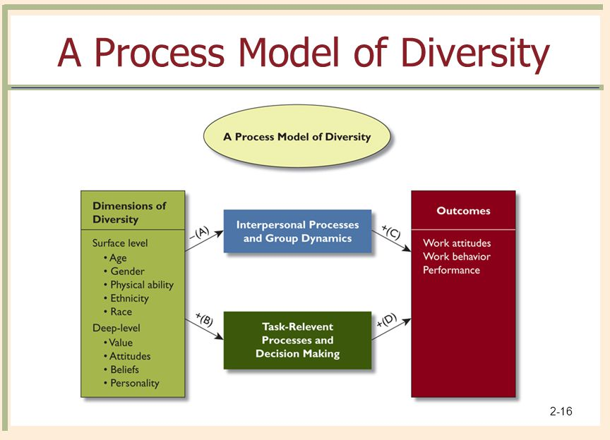 © 2008 The McGraw-Hill Companies, Inc. All rights reserved. 2-16 A Process Model of Diversity