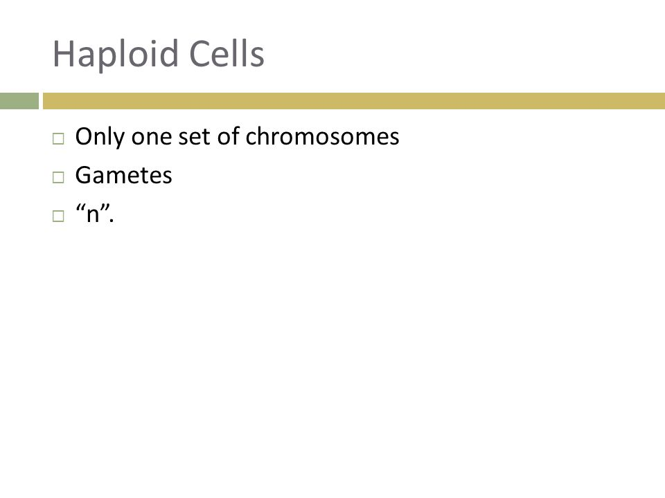 Haploid Cells  Only one set of chromosomes  Gametes  n .