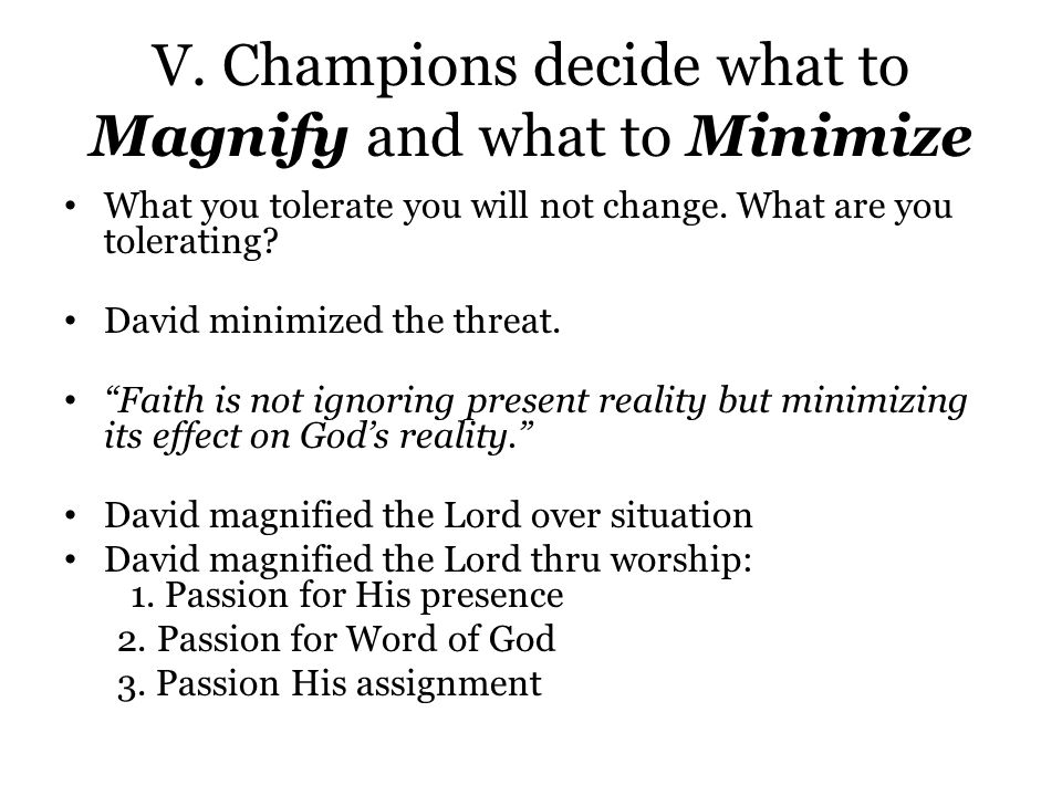 V. Champions decide what to Magnify and what to Minimize What you tolerate you will not change.