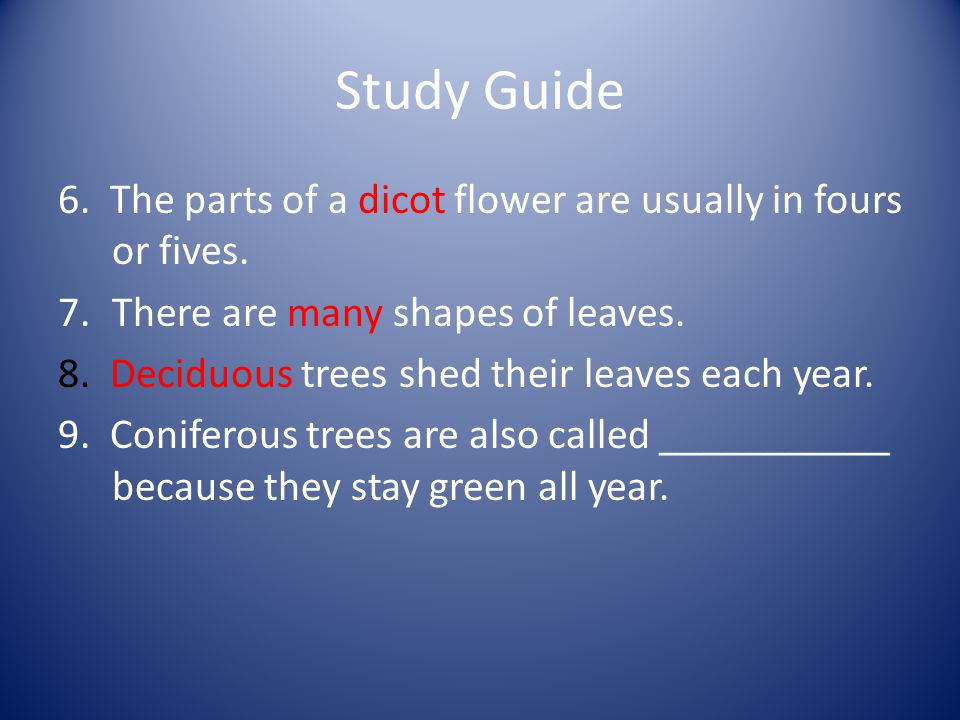 Study Guide 6. The parts of a dicot flower are usually in fours or fives.