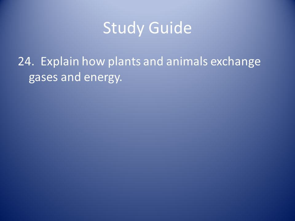 Study Guide 24. Explain how plants and animals exchange gases and energy.
